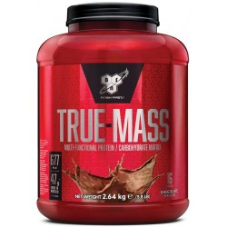 True Mass, Vanilla Ice Cream - 2640g